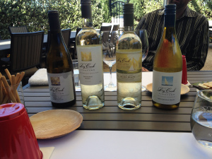Dry Creek Vineyard has a great outdoor spot for tasting.