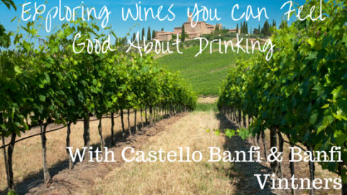 Exploring Wines You Can Feel Good About Drinking